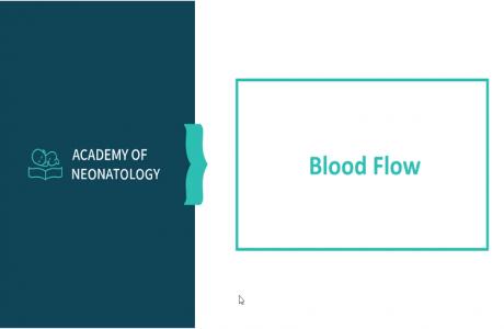 פיזיולוגיה של המערכת הקרדיו-ווסקולרית חלק 2